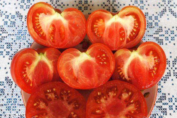 Мякоть помидор