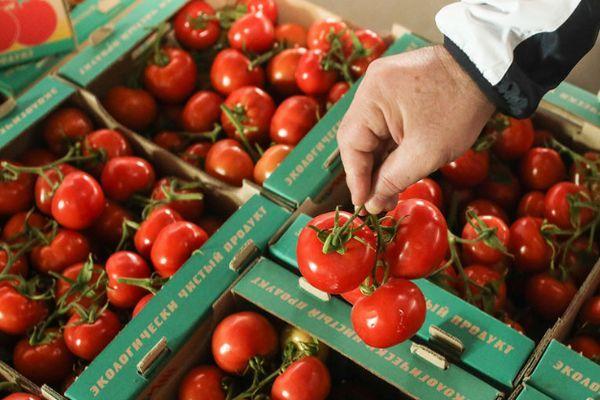Ящик с томатами