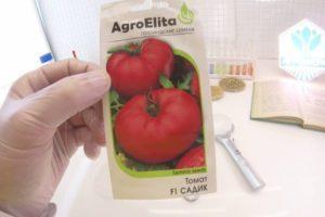 Описание томата Садик, выращивание и соблюдение агротехнических правил