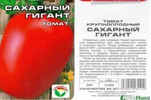 Описание крупноплодного томата Сахарный гигант и выращивание растения