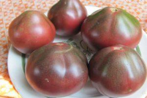 Описание экзотического сорта томата Шоколадная амазонка и агротехнические правила выращивания