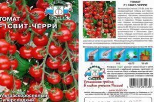 Описание плодов томата Свит Черри f1 и правила выращивания помидоров