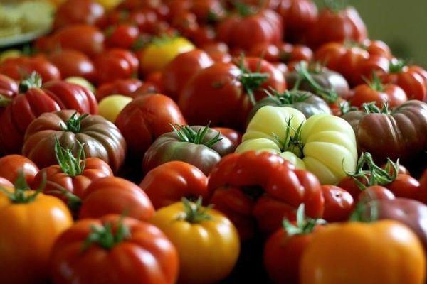 Японские томаты