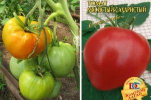 Характеристика и описание томата Мясистый сахаристый, выращивание сорта