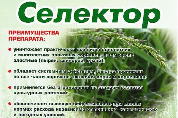 Препарат Селектор