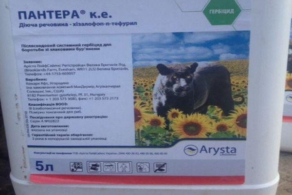 Пантера гербицид