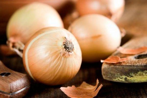 Головки луковиц