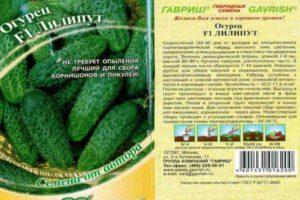 Описание гибридных огурцов Лилипут f1, выращивание и уход