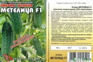 Описание огурца Метелица F1 и методы выращивания гибрида