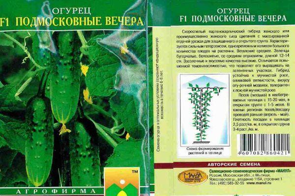 Описание огурцов