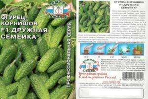 Описание и методы выращивания гибрида огурцов Дружная семейка