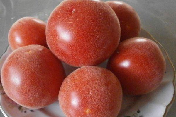 Помидоры абрикос