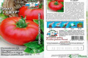 Описание сорта томата Ажур, его характеристика и урожайность