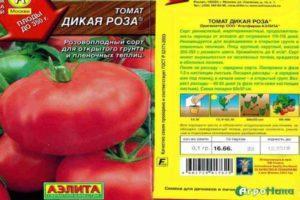 Описание сорта томата Дикая роза, особенности выращивания и ухода