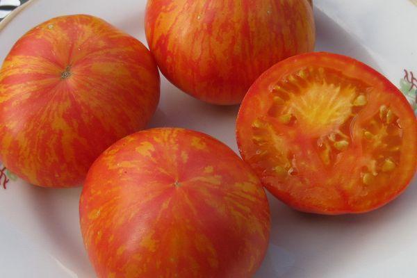 Сплеые томаты