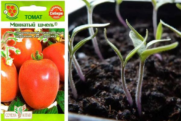 Штамбовые томаты