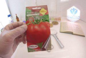 Описание сорта томата Москвич, его характеристика и урожайность