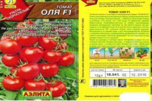 Описание сорта томата Оля, его характеристика и выращивание