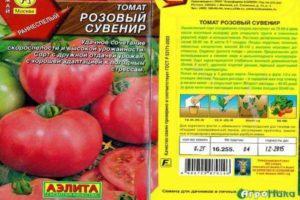 Описание сорта томата Розовый сувенир, особенности выращивания и ухода
