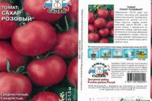 Описание салатного томата Сахар розовый и правила выращивания сорта