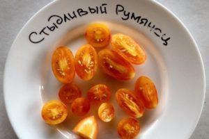 Описание томата Стыдливый румянец (Blush) и особенности выращивания культуры