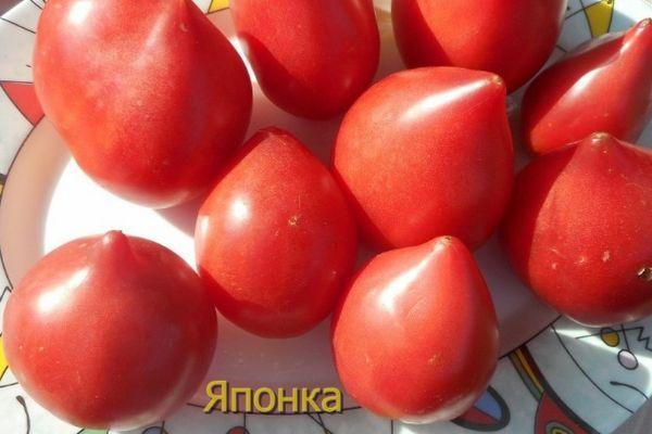 Японские помидоры