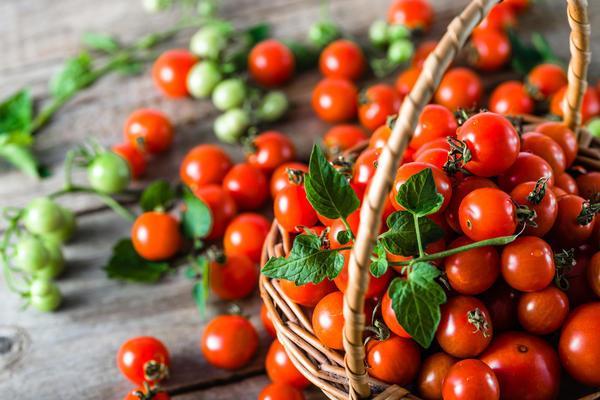помидоры черри в корзине