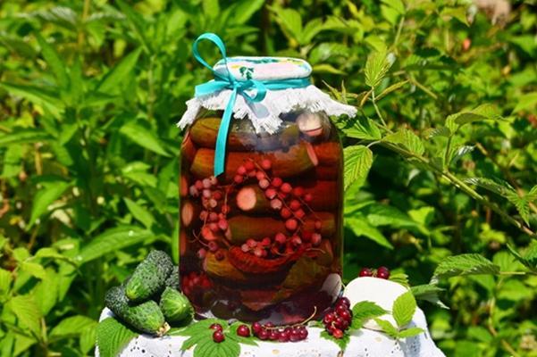 огурцы с ягодами рябины