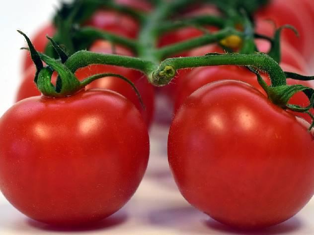 помидорчики спелые
