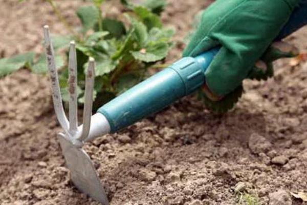рыхление почвы
