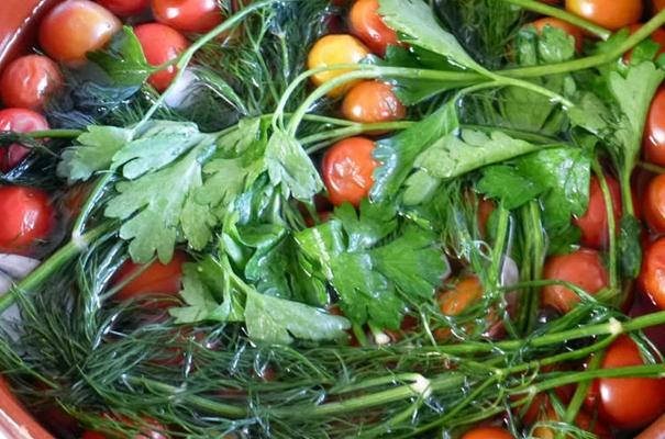 помидоры черри с укропом