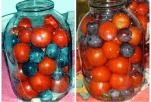 Самые вкусные рецепты маринования помидоров со сливами на зиму, с уксусом и без, хранение