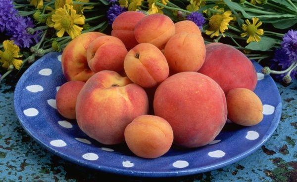 абрикос и персик на тарелке