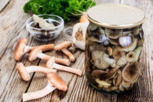 Простые рецепты приготовления маринованных опят за 15 минут на зиму со стерилизацией и без в домашних условиях