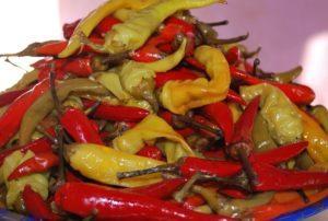 Рецепты горького перца цицак, маринованного на зиму по-грузински и сроки хранения
