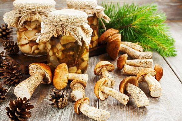 маринованные белые грибы в банках