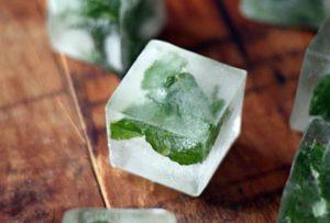 Правила хранения мяты в холодильнике свежей, сушка растения и заморозка