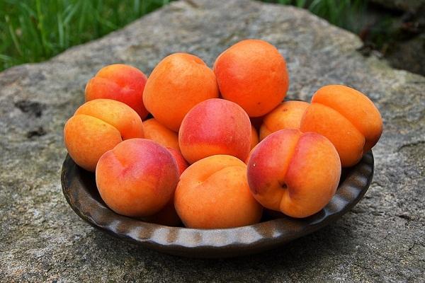 спелые абрикосы в миске