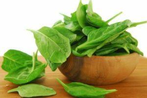 ТОП 10 рецептов, как лучше заморозить щавель на зиму для супа, выбор зелени и хранение