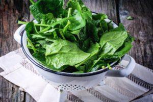 Как правильно заморозить листья шпината в домашних условиях на зиму, рецепты заготовок