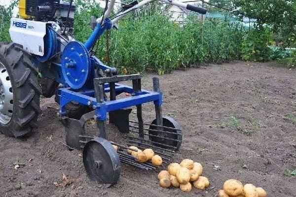 Мотоблок для картошки
