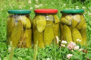 ТОП 10 рецептов консервированных огурцов с яблочным уксусом на зиму, со стерилизацией и без