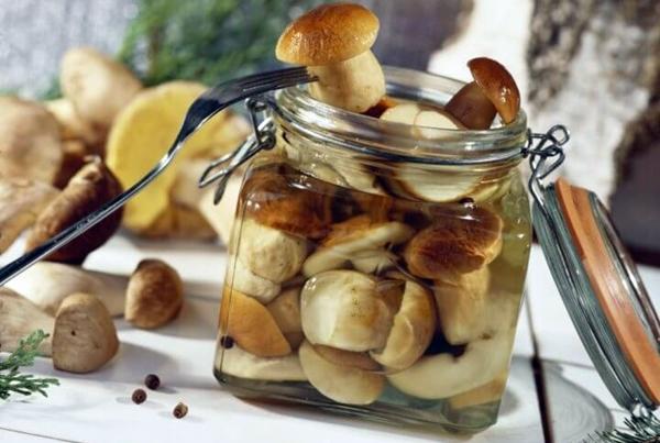 засоленные белые грибы в банке