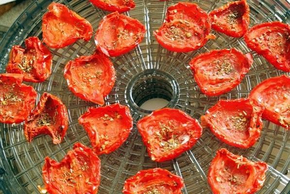 помидоры в электросушилке