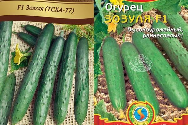семена огурца зозуля