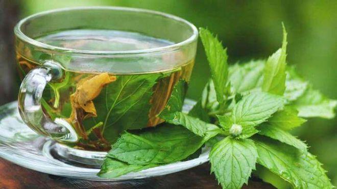 чай из корня петрушки