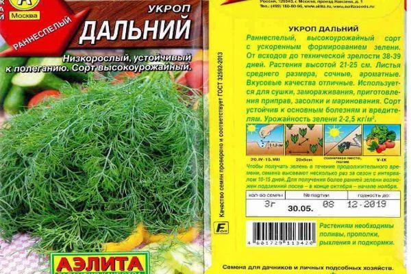 Укроп Дальний