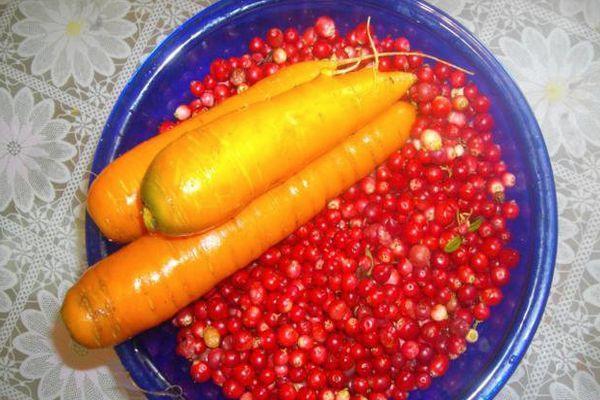 Морковь и брусника