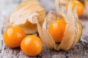 Наивкуснейшие рецепты приготовления варенья из физалиса на зиму, как сварить джем и хранение заготовок