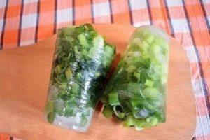 Как заморозить зеленый лук на зиму в домашних условиях в морозилке и можно ли